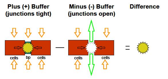 239 Qualyst - Figure 2_2