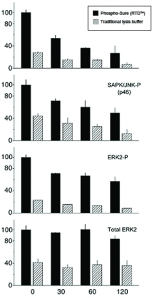 Phospho-Sure™ bar graph comparison with classical lysis buffer