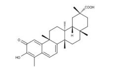 Celastrol (10-2187) Focus Biomolecule tebu-bio