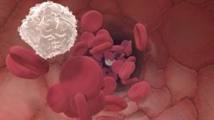 Blutkörperchen in einer Arterie