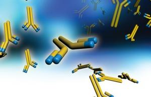 Antibodies - Blog Thumbnail