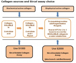 soluble and insoluble Sircol assay