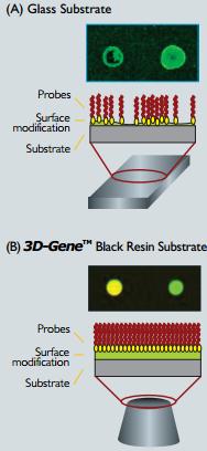 3D-gene black resin technology used for tebu-bio miRNA and mRNA profiling