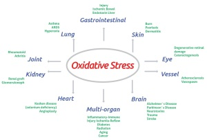 Oxidative stress and related diseases.
