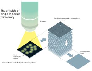 Single-molecule microscopy