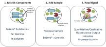 EnSens principle | Enzium tebu-bio