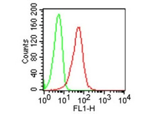 Mouse IgG2a Isotype Control Fluorescein (Cat. nr 039010-0241). Source: tebu-bio