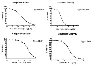 Caspase BPS graphs
