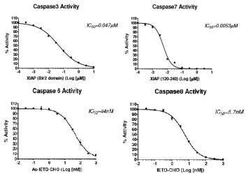 Caspase BPS graphs