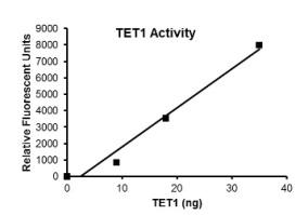 BPS TET1 - activity plot