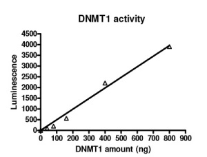 Graph DM
