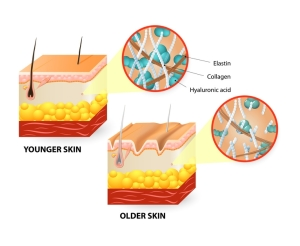 Visual representation of skin changes over a lifetime.