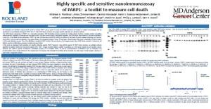 PARP1 antibodies poster tebu-bio | Rockland Immunochemicals Inc.