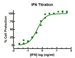 IFNlambda results