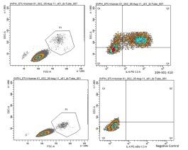 Anti-IL6 Antibody in FCM (cat. nr 209-301-310S by Rockland from tebu-bio)