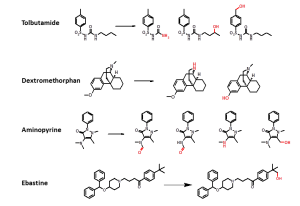 Metabolite-synthesis