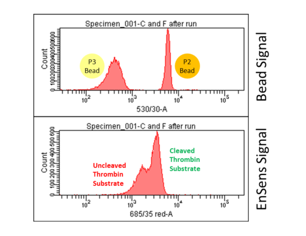 Protease Activity by Flow Cytometry