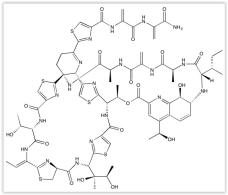 Thiostrepton Focus Biomolecules tebu-bio Catalog # 10-2108