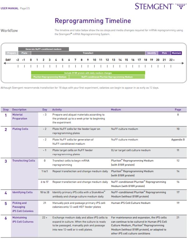 Stemgent's reprogramming Timeline - Stemgent's user manual M000071V1